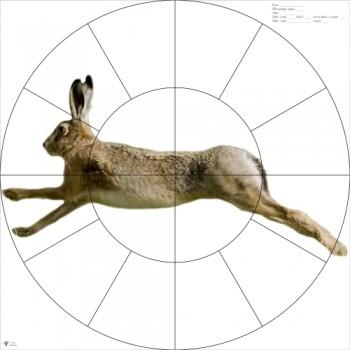 Мишень (диаметр -80см) 16-дольная Русак